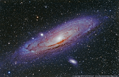 All About Andromeda